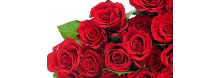 Цветы с доставкой по Рязани. Быстрое оформление заказа. Доставка от 1 часа.