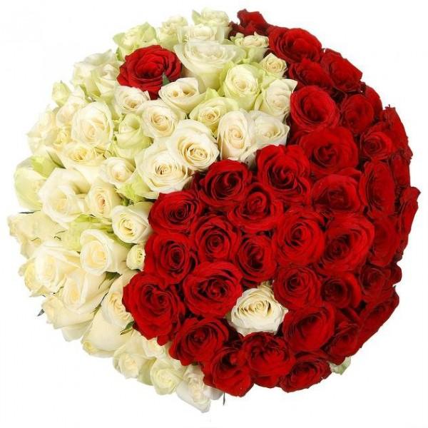 101 роза Ин и Янь