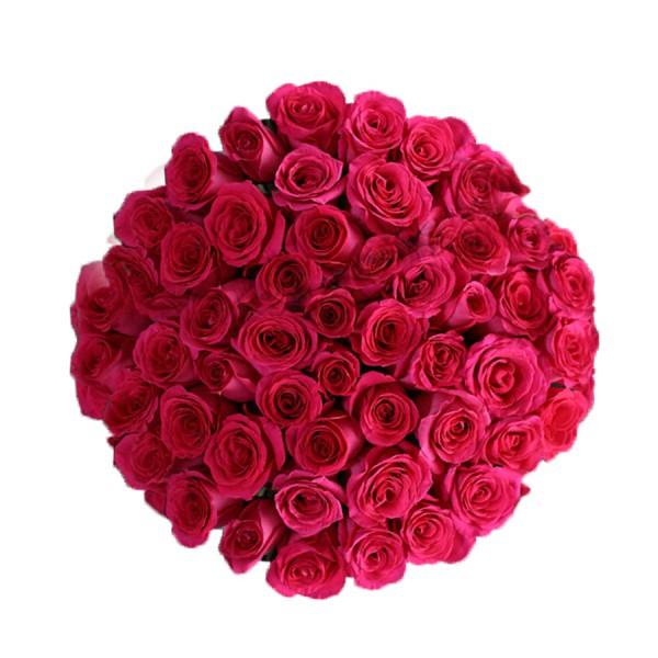 51 роза Пинк Флойд
