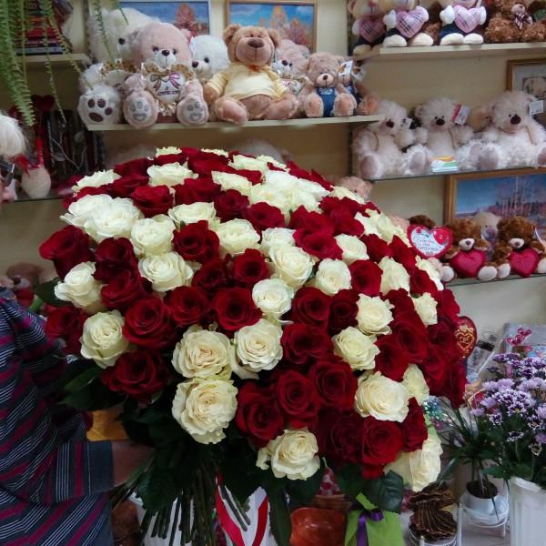 151 роза Арлекино