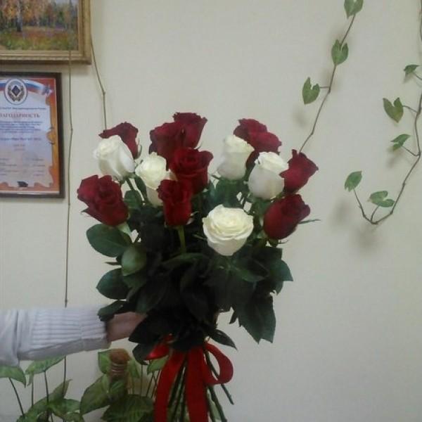 Арлекино 15 роз