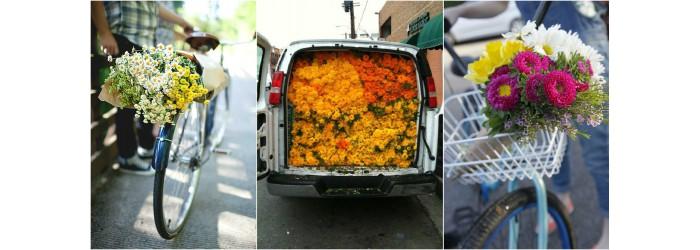Цветы в Рязани доставка. Высокое качество цветов, вежливые курьеры, пунктуальность!