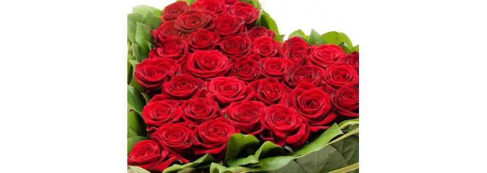 Розы в Рязани дешево. Большой выбор, низкие цены и бесплатная доставка по Рязани!